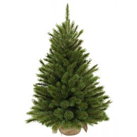 Сосна Forest frosted TriumphTree (Голландия) с инеем, 60 см