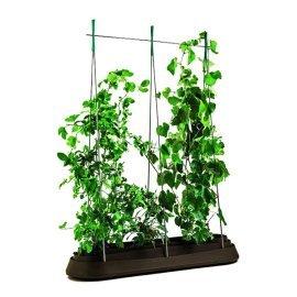 Грядка для растений Keter (Израиль) G-Row коричневая